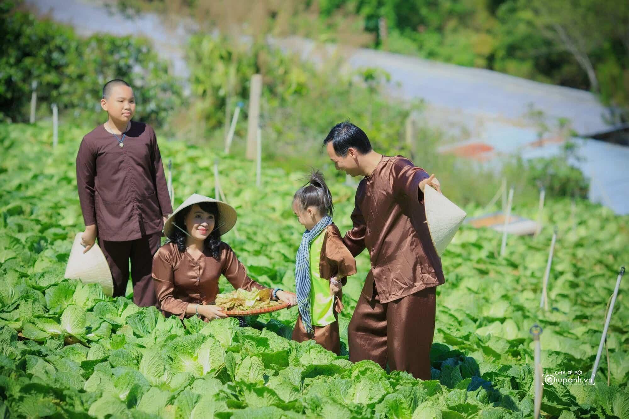 Concept chụp ảnh gia đình phong cách nông dân GĐ013
