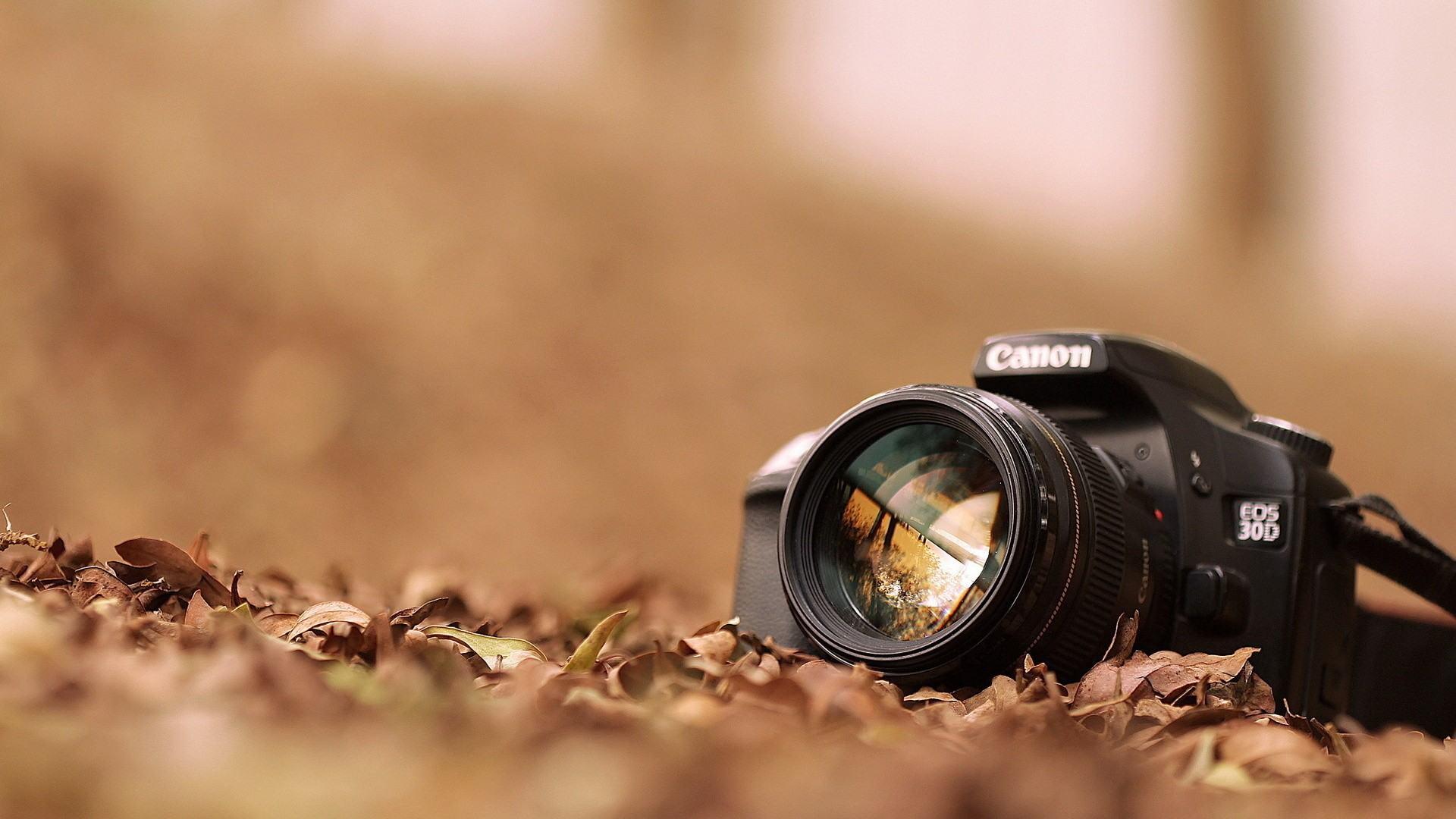 Tìm việc chụp ảnh bán thời gian tại hà nội 1